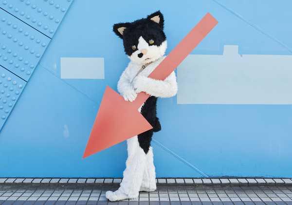 むぎ(猫) (okmusic UP's)