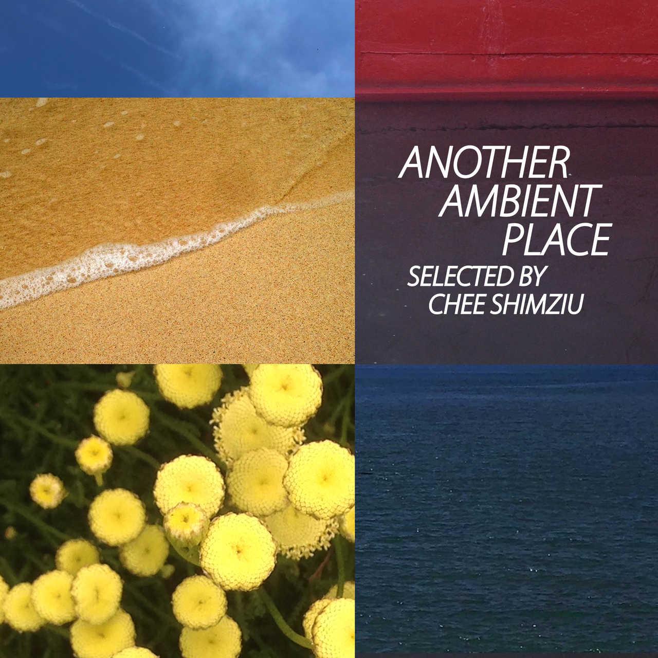 プレイリスト「Another Ambient Place : selected by Chee Shimizu」