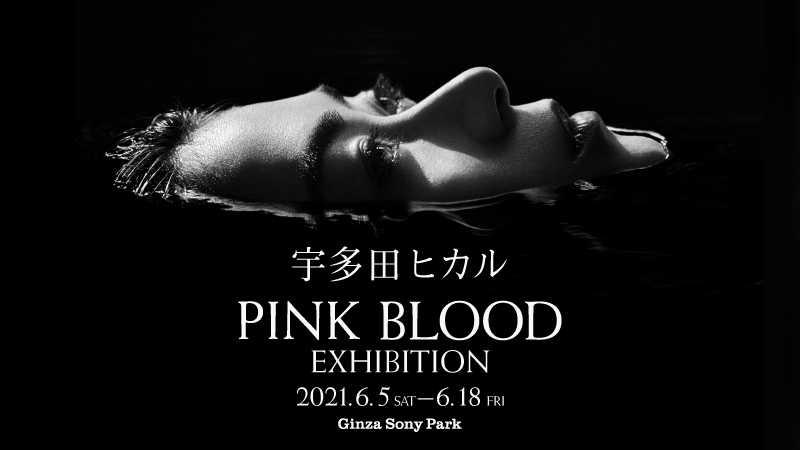 『宇多田ヒカル「PINK BLOOD」EXHIBITION』キービジュアル