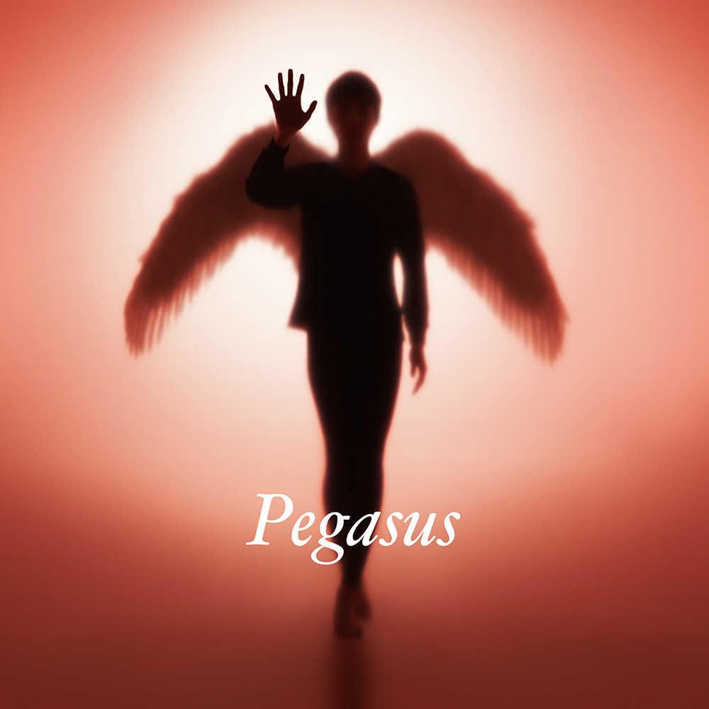 配信楽曲「Pegasus」