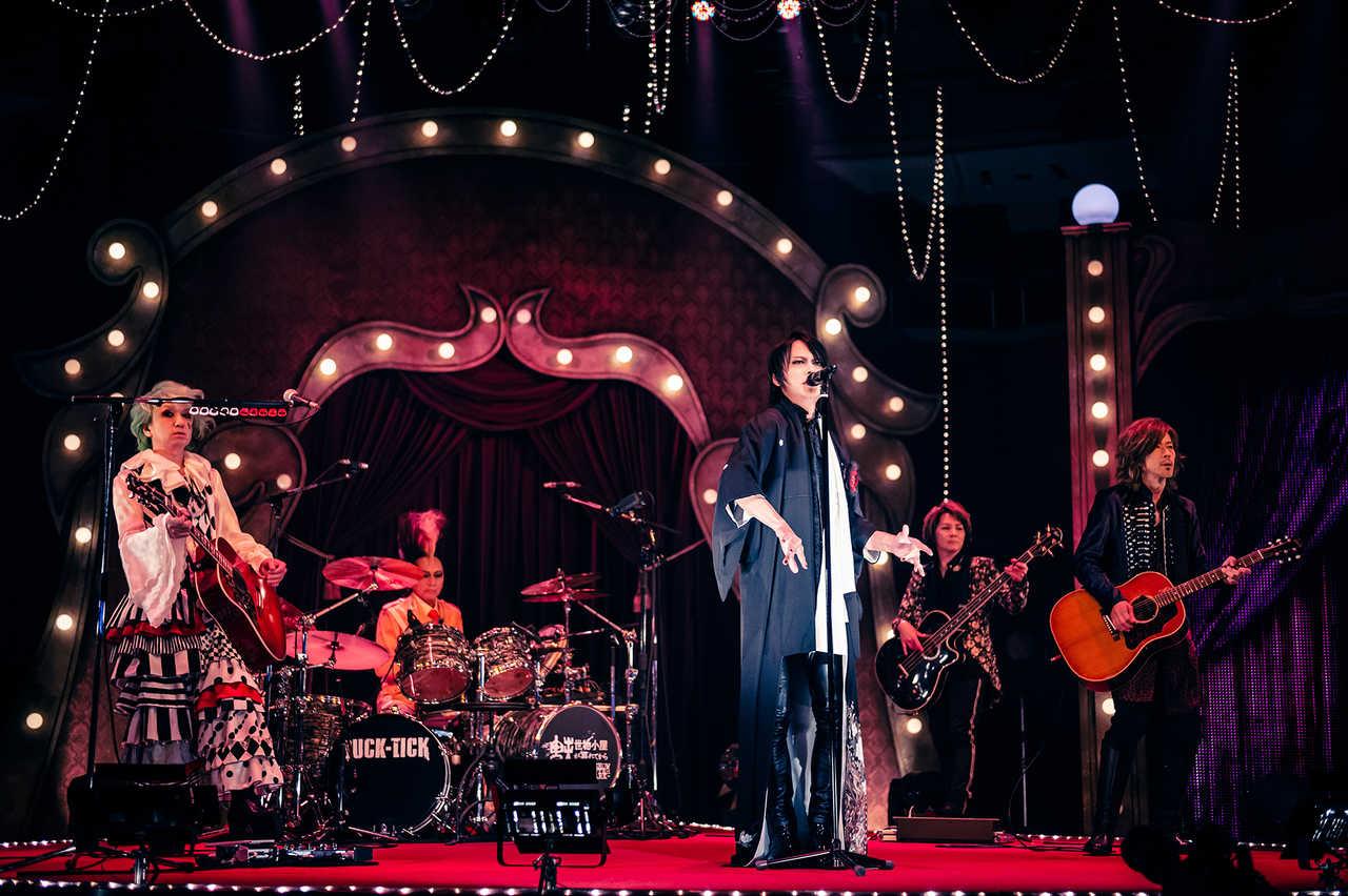 7月17日@Streaming Live『魅世物小屋が暮れてから〜SHOW AFTER DARK〜』 photo by  田中聖太郎・渡邊玲奈(田中聖太郎写真事務所)